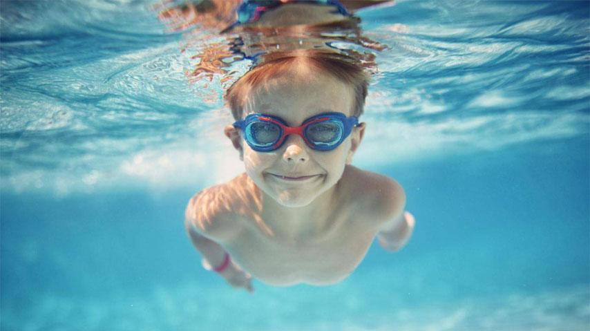 محصولات برند شنای زاگز در تگموند